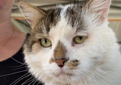 Ralphie profile2